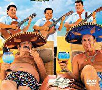 Мексиканский вояж Степаныча (ТВ)