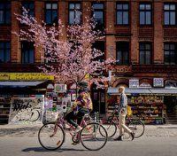5 городов для весеннего путешествия