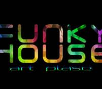 Funky House Art Place